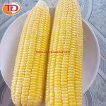 Bắp mỹ đông lạnh (Frozen Yellow Corn) 01