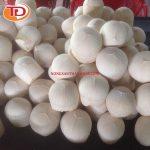 Dừa đông lạnh (Frozen Coconut Meat) 05