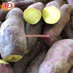 Khoai lang đông lạnh (Frozen Sweet Potato) 10