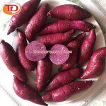 Khoai lang đông lạnh (Frozen Sweet Potato) 12