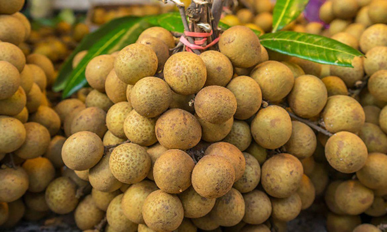 Xuất khẩu trái cây có nhiều tín hiệu khả quan