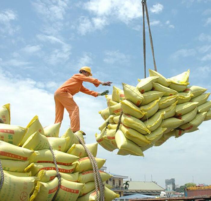 Xuất nhập khẩu nông sản Việt Nam - Trung Quốc sụt giảm trong 9 tháng đầu năm.