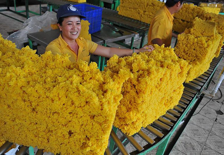 Trung Quốc chi 1,5 tỷ nhập khẩu cao su Việt Nam