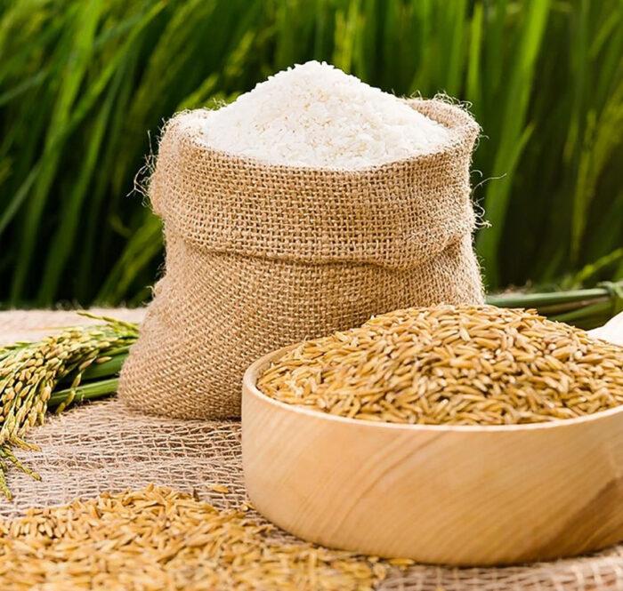 Xuất khẩu gạo giảm hơn 31% trong hai tháng đầu năm