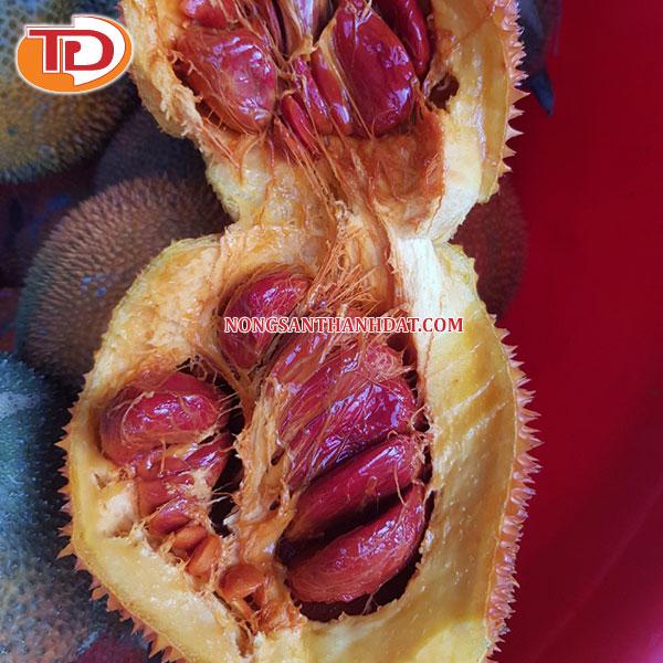 Gấc tươi đông lạnh (Frozen Momordica Fruit) 03