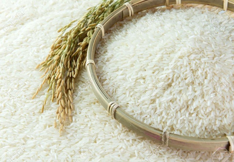 Giá gạo Việt, Thái Lan tiếp tục lao dốc