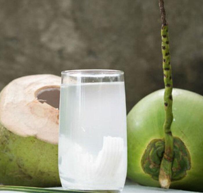 Nước dừa, đường phèn, gừng có trị Covid-19?